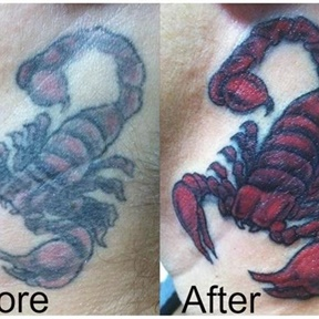 Scorpion Repair Cover Up
